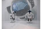 Гуманоидный робот PALRO - трюкач