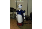Робот SCHEMA легко поддержит любую беседу