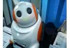 Робот PaPeRo заменяет кассира-человека