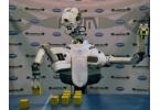 DARPA разрабатывает робота-метателя гранат ARM