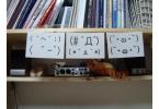 Злой и вредный робот, живущий в деревянной коробке