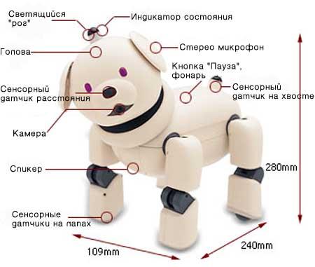 собачка робот старого поколения