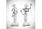 Интеллектуальный робот Пеппер доступен для заказа