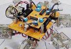 Робот под управлением гриба-паникера