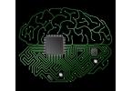 Искусственный интеллект: в чём загвоздка?
