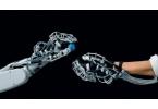 Festo разработала совершенную роботизированную руку