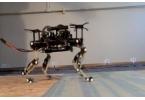 Миниатюрный робот-гепард