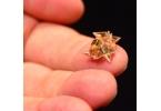 MIT миниатюрный робот-оригами