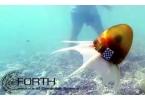 Робот-осьминог бороздит моря и океаны