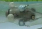 Робот-червь заползет в организм