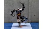 Плавный и изящный гуманоидный робот Choromet 2