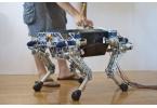 StarlETH: четырехногий робот из Швейцарии