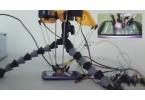 Робот предназначенный для взлома смартфонов