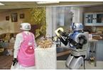 Mahru-Z – двуногий робот-домохозяйка