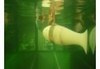 Ученые создали робота-рыбу с новым органом чувств