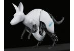 Прыгающий кенгуру-робот от компании Festo