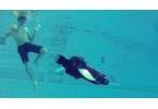 Робот-черепаха прошел испытания в бассейне