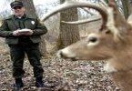 Роботы-олени охотятся на браконьеров