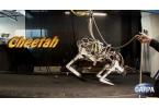Робот-гепард установил мировой рекорд скорости бега