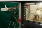 Роботизированная рука копирует движения обезьяны