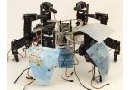 Норвежец превратил глобус в танцующего робота-краба