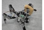 В Японии создали хищного робота-паука