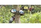 Змееподобный робот взобрался на дерево