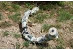 Пневматические роботы-змеи ползают по планете