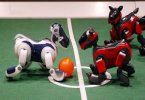 Стартовал Чемпионат мира по футболу среди роботов