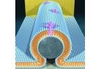 Создан первый бионанотранзистор