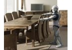 Французских робототехников не печалит повесть о Ромео