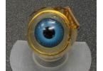 Ретины-имплантаты подарили ослепшим второе зрение