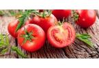 Робот от Panasonic собирает помидоры