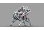Спортивный антиробот-экзоскелет скоро будет использоваться в Канаде