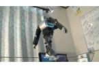 В Японии сделали робота-канатоходца