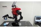 Пять самых интересных роботов 2011 года
