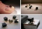 I-SWARM: микро-роботы на чипе будут действовать в составе роя