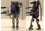 Ученые заставили робота обучаться ходьбе