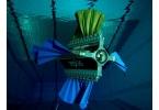Подводная каракатица Sepios с плавниками