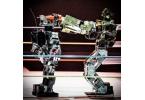 Бои роботов