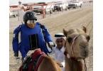 Роботы-жокеи на верблюжьих скачках практиковали электрошок