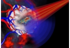 Золотые нанотрубки уничтожат раковые клетки