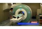 Неврологи продемонстрировали обучение в стиле «Матрицы»
