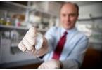 Биоинженеры создали искусственное человеческое ухо